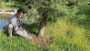 Deü'de Organik Atıklar Bitkilere Can Veriyor