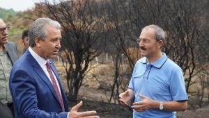 """""""Ege Üniversitesi Orman Okulu"""" faaliyetlerine hızlı başladı"""