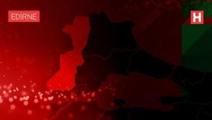 'Efsane renk' Edirne kırmızısının elde edildiği bitkinin ekim alanları genişliyor